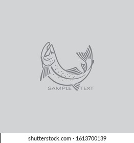 the picture shows the salmon fish