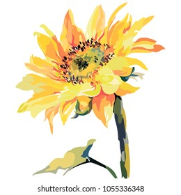 Picture of a sunflower in orange colors. Vector