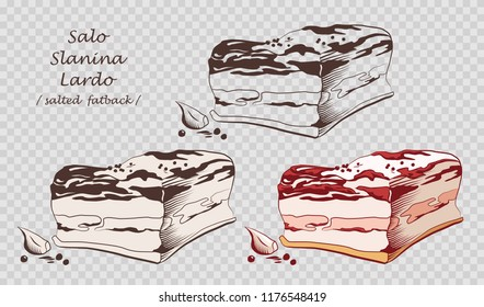 Piece of salo isolated on the pseudo transparent background. Slanina, solonyna, lardo. Salted or cured pork fat. Set of outline, black and white, colored images. Icon, emblem, logo element. Vector