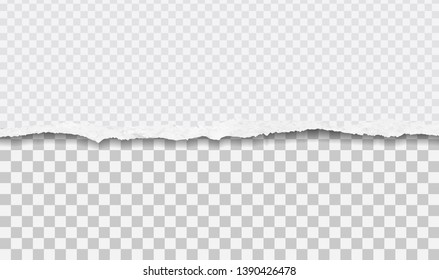 Piece of torn horizontal paper strip is on squared background. Vector illustration