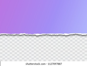 Piece of torn paper with ripped edges and shadow isolated on transparent background for header, banner design