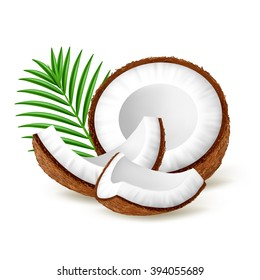 Pieces of coconut with leaves isolated on white background. Realistic vector illustration.