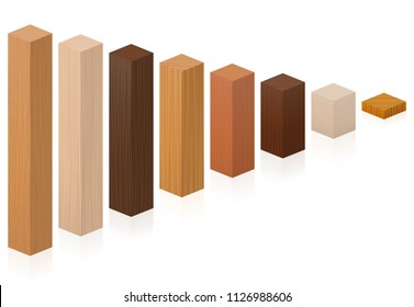 Pieces of different wood types getting shorter - wooden blocks from various trees. Isolated vector illustration on white background.