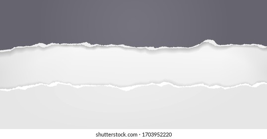 Pieces of torn black horizontal paper with soft shadow stuck on white background. Vector illustration