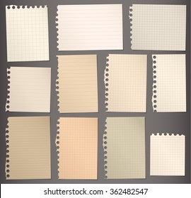 Pieces of torn brown lined and squared note paper