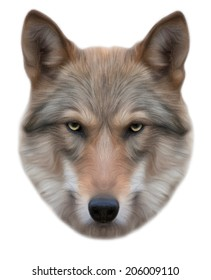 Piercing look of a wolf, isolated on white background. European wolf, beautiful animal and dangerous beast. Amazing vector portrait in oil painting style, great for user pic, icon, label or tattoo.
