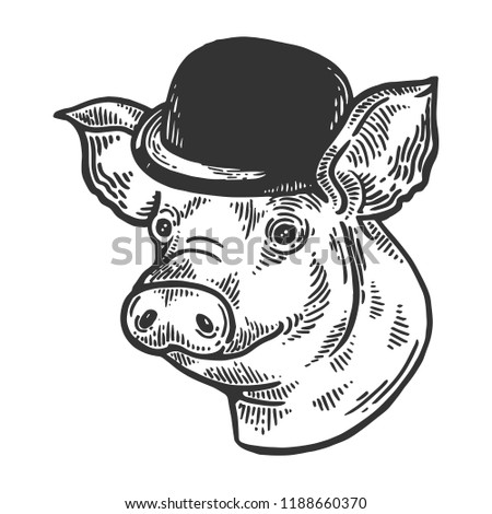 c75dc69dc0a65 Pig animal in bowler hat engraving vector illustration. Scratch board style  imitation. Black and