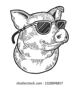 Pig animal in sunglasses sketch engraving vector illustration. Scratch board style imitation. Black and white hand drawn image.