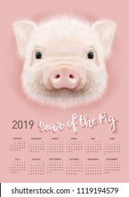 Pig calendar for 2019. Vector editable template with concept. Symbol of the year in the Chinese calendar. Realistic vector illustration.