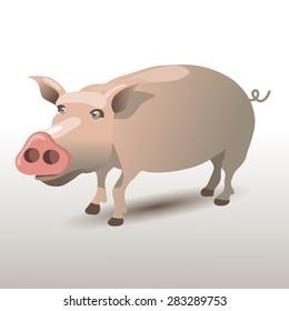 Pig Character. Vector illustration. Cartoon