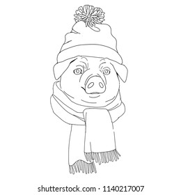 Pig head in a hipster hat and with knitted scarf. Pig is symbol 2019 new year. Black and white vector illustration for coloring book.