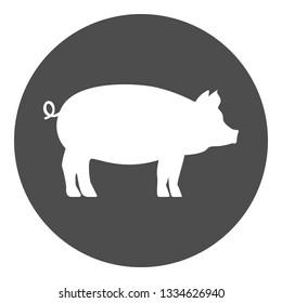 Pig icon. Vector.
