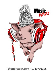 Pig in a knitted cap and with a red headphones. Vector illustration.