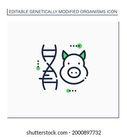 Pig line icon. Genetically modified pig meat. GMO product. Inorganic food. Genetically modified organism concept. Isolated vector illustration.Editable stroke