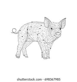 Pig in low poly style. Polygonal geometric triangular wire graphic construction structure.