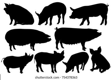 pig pork hog silhouette sets