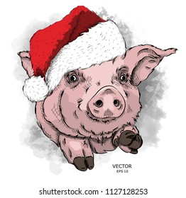Pig in Santa Claus hat. New Year's card. Vector illustration