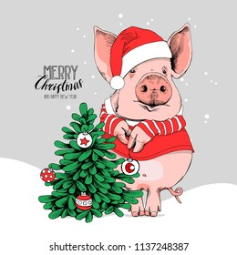 Pig in a Santa's red costume and with a fir tree. Merry Christmas - lettering quote. New year card, poster, t-shirt composition, hand drawn style print. Vector illustration.