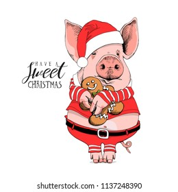 Pig in a Santa's red costume and with a gingerbread man. Have a sweet Christmas - lettering quote. New year card, poster, t-shirt composition, hand drawn style print. Vector illustration.