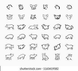 Pig sketch icon set for web, mobile and infographics. Hand drawn pig icon. Pig vector icon. Pig icon isolated on white background.