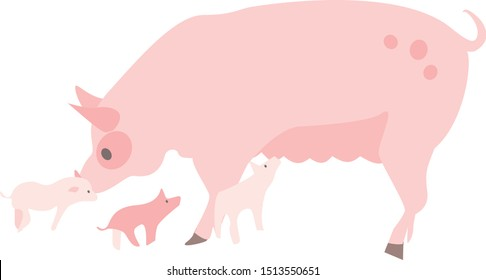 Pig Sow with Piglets Flat Vector