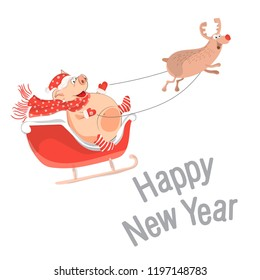 Pig is the symbol of Chinese 2019. Christmas deer lucky pig in a sled to celebrate the new year. Christmas card or banner cute piglets. Vector illustration of year of the yellow pig