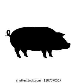 Pig vector icon isolated on white background
