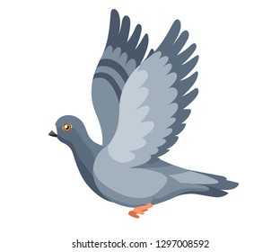 Pigeon bird flying, pigeon flaps its wings. Flat cartoon character design. Colorful bird icon. Cute pigeon template. Vector illustration isolated on white background.