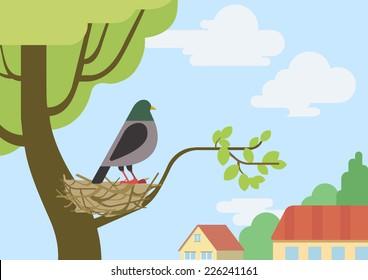 Pigeon (male dove) on street tree branch nest flat design cartoon vector wild animals birds. Flat zoo nature children collection.