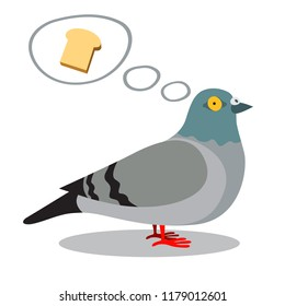 A pigeon thinking about a bread