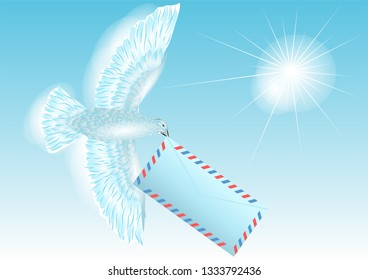 pigeon. white dove carries letter. 10 EPS