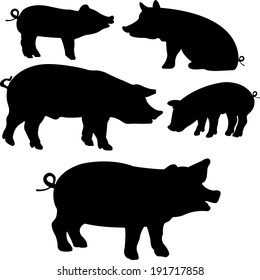 Pigs collection - vector silhouette