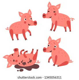 Pigs. Cute vector characters.