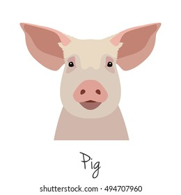 pig's head on an isolated background. pig Face. poster, banner, advertising, design element. Flat Style. vector