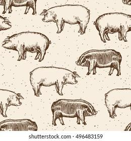 Pigs seamless pattern farm pigs hand drawn vintage vector