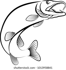 pike fish - line art illustration