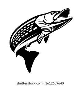 Pike Fishing Logo Template. A Strong & Solid Pike fish jumping out of the water.
