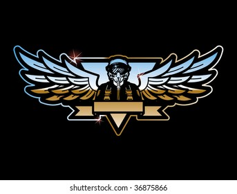 1000 pilot wings pictures royalty free images stock photos and