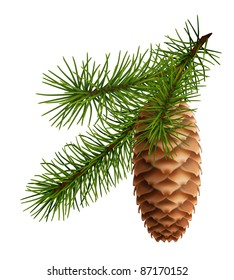 Pine cone with branch, 10eps