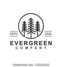 pine evergreen or conifer cedar coniferous cypress larch, pine tree forest vintage line art Logo design vector template