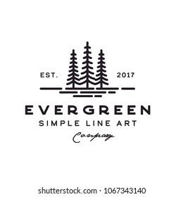 pine evergreen fir hemlock spruce conifer cedar coniferous cypress larch pinus tree forest vintage retro hipster line art Logo design