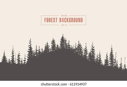 Pine forest background, vector illustration, hand drawn, sketch