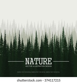Pine forest in morning. Nature landscape vector background.