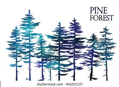 Pine forest. Vector freehand drawing . Sketch on a white background .