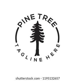 Pine Logo Design. Pine Tree Logo Vector. Pine Forest Logo Template