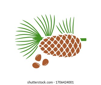 Pine nut logo. Isolated pine nut on white background. Cedar