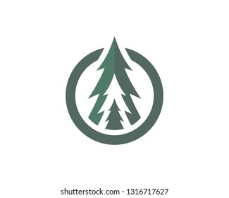Pine Tree in a Circle