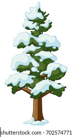 Pine tree covers with snow illustration