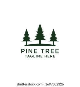 Pine Tree Logo Icon Design Template Vector Illustration