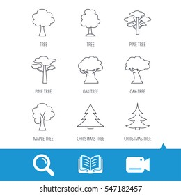 Pine tree, maple and oak icons. Christmas trees linear signs. Forest trees flat line icons. Video cam, book and magnifier search icons. Vector